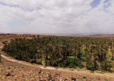 Marocco_Incontro_EszendoYoga_2019_33
