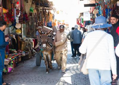Marocco_Incontro_EszendoYoga_2019_47